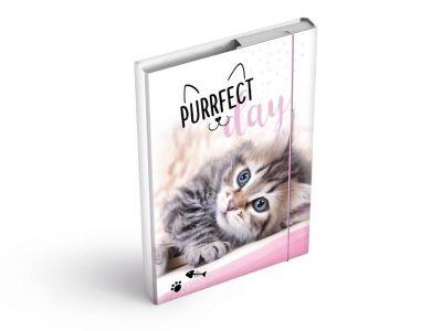 Desky na sešity MFP box A5 Kočka